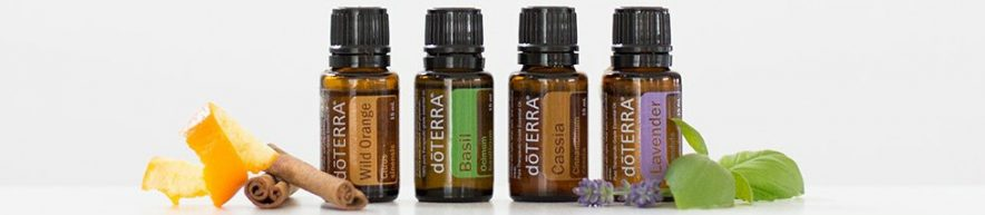 doTerra essential oil bottles next to a sprig of lavendar and mint, a stick of cinnamon and a piece of orange peel